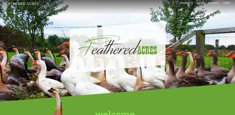 Feathered Acres